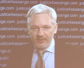 Sweden rejects UN group's findings on Assange
