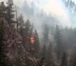 news-wildfire-season