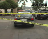 Police: California man shot by officers has died