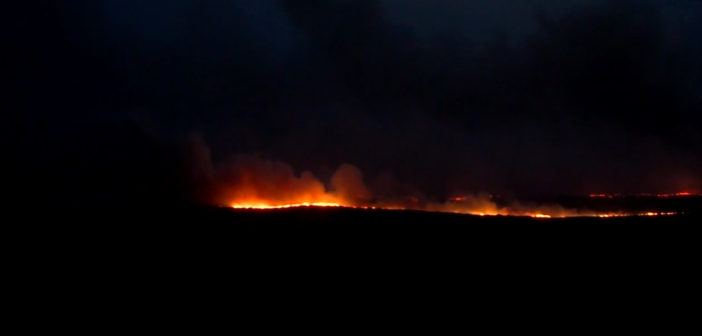 Texas wildfire burns 94 sq. miles before rain quells flames